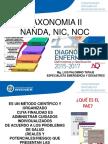 taxonomia Nanda Noc Nic