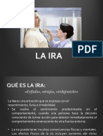 manejodeiraoenojo-130804205418-phpapp02