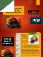 Cadena de Valor Del Cacao i