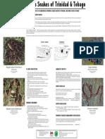 venomous-snakes-trinidad-tobago-smaller-1-16-13.pdf