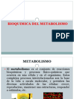 Clase Metabolismo de Carbohidratos