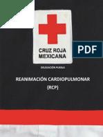 MANUAL DE RCP 2017.pdf