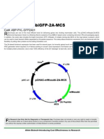 pCHAC-mWasabi-2A-MCS