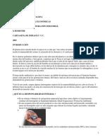 gestion ambiental responsabilidad.pdf