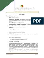 guia_practica_fisio4.docx