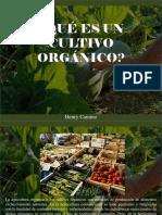 Henry Camino - ¿Qué Es Un Cultivo Orgánico?