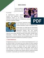 MARCO TEORICO y Materiales de Staphylococcus