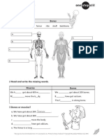 CLIL - Science _ Muscles and bones.pdf