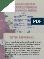 283300902-Hubungan-Sistem-Reproduksi-Dengan-Sistem-Panca-Indra.pptx