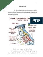 Sistem Respiratory Unggas