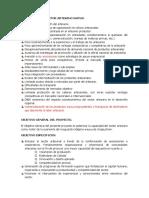 PROYECTO  SECTOR ARTESANO.docx