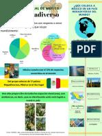 Infografia. Mexico Mega Dicerso.