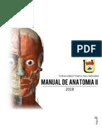 Manual Completo de Antomía II