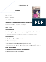 Proiect Didactic Ultima Noapte