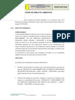 2.4 ESTUDIO DE IMPACTO AMBIENTAL.doc