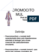 21. Feocromocitomul.ppt