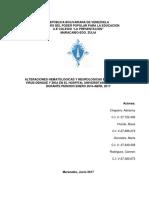 Tesis  final de grado (1).pdf