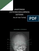 Anatomija Muskuloskeletnog Sistema
