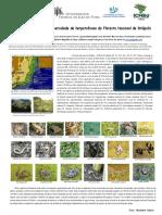 Amostra Preliminar Da Biodiversidade de Herpetofauna Da Floresta Nacional de Ritápolis