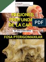 05. Regiones Profundas de la Cara II.pdf