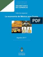 Informe Especial México Ago 2017