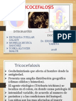 tricocefalosis.pptx