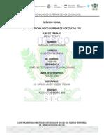 PLAN-DE-TRABAJO-DE-NIK-.docx