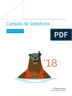 Salesforce Console