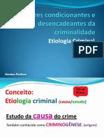 Crimino 4