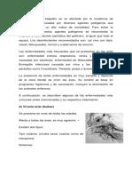 Manual de Enfermedades Aves