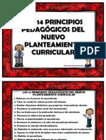 3581be_principiospedagogicos2016epme.pdf
