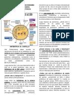 2 ATB y resistencia.pdf