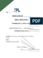 2. Formato Informe de Practicas