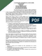 CASO DE ADMÓN. II - Cultrua Org..docx