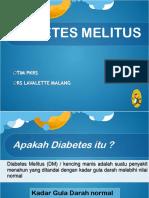DM PKRS revisi.ppt