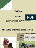 Lexicon - Animals