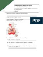 Guia 5to Sistema Respiratorio