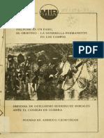 MIR Neltume Es Un Paso La Guerrilla Permanente en Los Campos