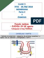 Membrana y Osmosis