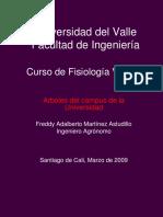 Arboles Del Campus Universidad Del Valle