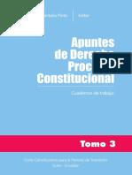 Apuntes_ derecho procesal constitucional tomo 3_1ra_.pdf