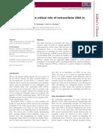 Biofilm - PDF