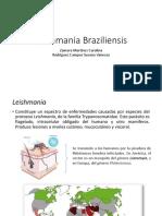 Leishmania Braziliensis Completa