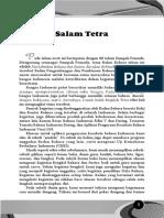 Tetra DES 16_BW