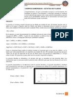 Estatica de Fluidos-presion en Un Cuerpo Sumergido