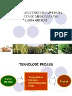 Proses-Karbohidrat -2