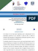 Pruebas in situ.pdf