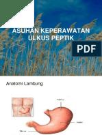 1 - Ulkus Peptikum v1