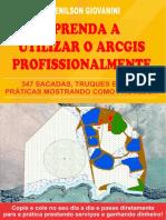 Livro Aprenda a Utilizar o ArcGIS Profissionalmente