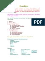 1.-EL-AGUA.docx
